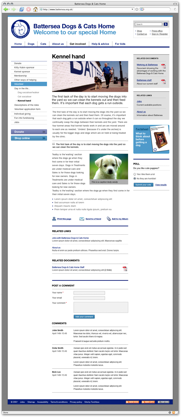 Battersea Cats And Dogs Home Work Experience