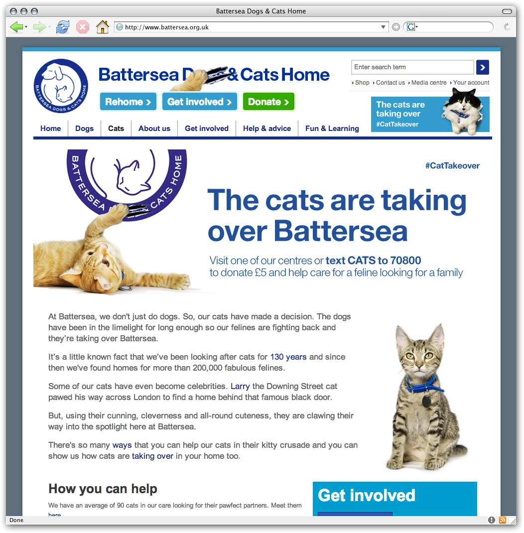Battersea Dogs And Cats Home Work Experience