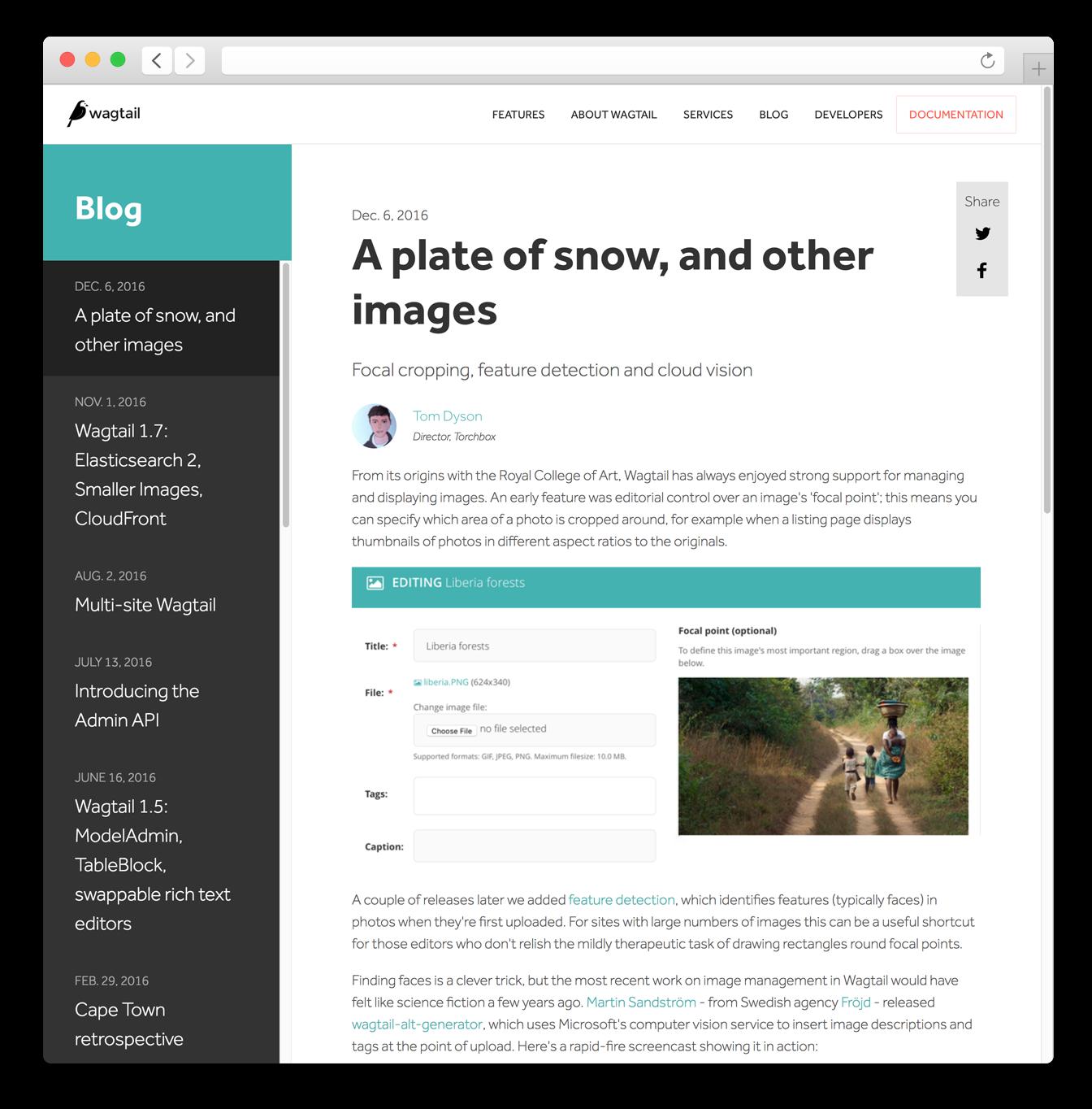 Wagtail blog